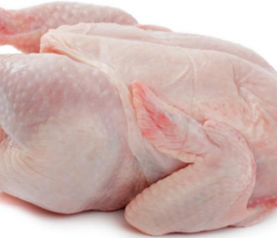 السماح  بزيادة بإدخال الدجاج المبرد لغزة