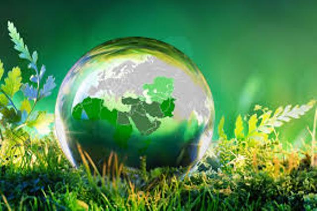 في «يوم البيئة»: قطاع الطاقة أكبر مولد للمنبعثات في فلسطين