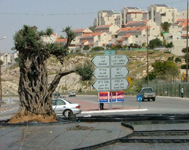 الاحتلال يمارس التطهير العرقي في القدس والأغوار .. والاستيطان يتصاعد بتشجيع أميركي