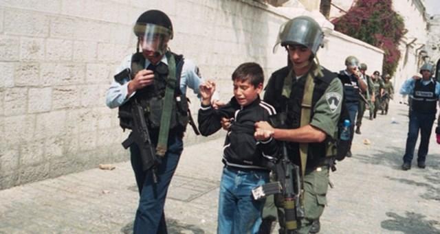 الاحتلال اعتقل (486) فلسطينيا خلال نوفمبر الماضي