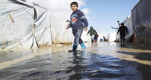 الاحصاء: 6 مليون لاجئ مسجل في فلسطين والشتات