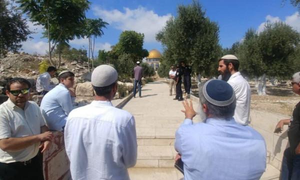 توظيف الأعياد الدينية اليهودية في تصعيد الاعتداءات ضد الفلسطينيين وممتلكاتهم