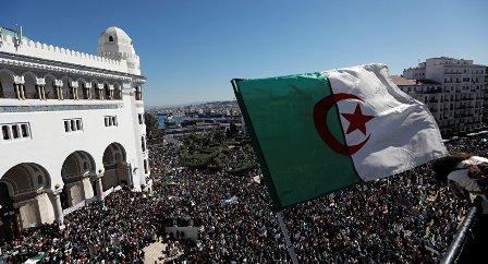 هل تنجح الجزائر؟