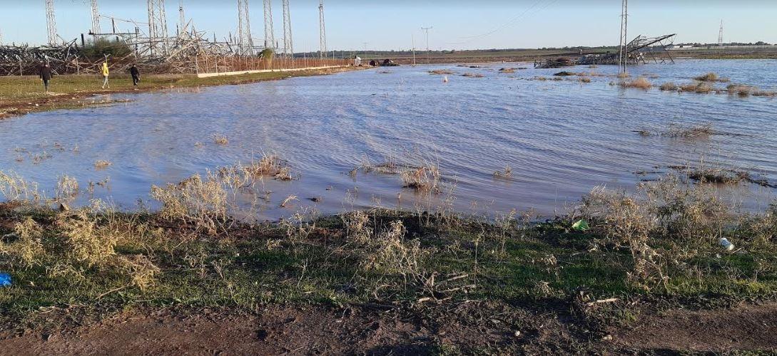 الزراعة : ٩٤.١% نسبة الأمطار والشمال الأعلى هطولًا