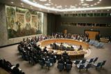 مجلس الأمن ينهي جلسته حول عفرين السورية دون إدانة .. ووفد أميركي بأنقرة لإجراء محادثات حول العملية