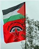 «الديمقراطية» تدعو لتطوير الموقف الفرنسي والبريطاني والأممي نحو خطوات عملية وفاعلة وضاغطة على الاحتلال