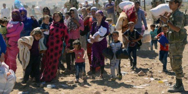 الأمم المتحدة: 56 مليون شخص بالعالم بحاجة للمساعدات الغذائية